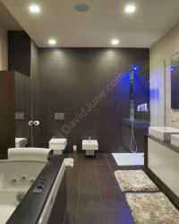 David June Bathroom pic 2